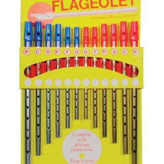 Generation FL-SC-12 flageolet display kaart met 12 flageoletten (6 x nikkel