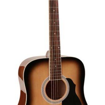Richwood RD-12-SB akoestische gitaar