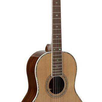 Richwood RV-70-NT Parlor blues gitaar