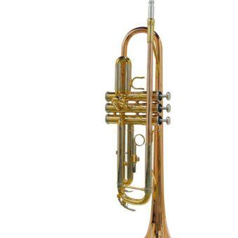 Stewart Ellis SE-1800-M trompet