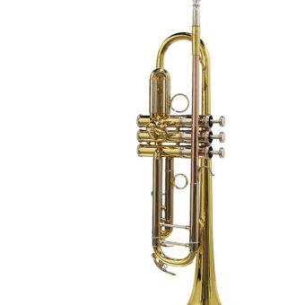 Stewart Ellis SE-2400-L trompet
