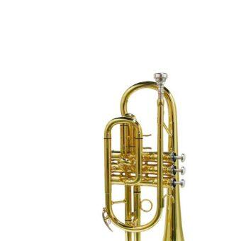 Stewart Ellis SE-1200-L cornet