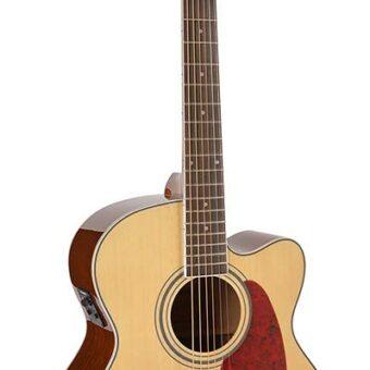 Richwood RJ-17-CE akoestische gitaar