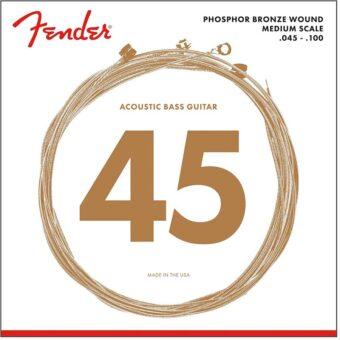 Fender F-7060 snarenset akoestische basgitaar