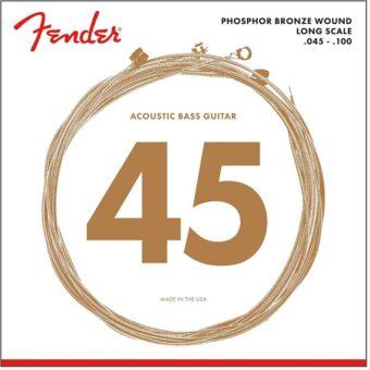 Fender F-8060 snarenset akoestische basgitaar