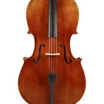 Rudolph RC-1034 cello