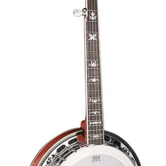 Richwood RMB-905-A archtop bluegrass banjo 5-snarig