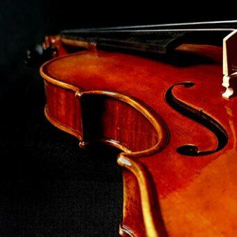 Rudolph RV-1544 viool 4/4