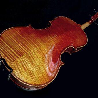 Rudolph RV-1534 viool 3/4
